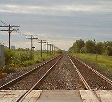 Twin Tracks by Stephen Thomas