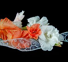 Ruffles On Ribbon by Maria Dryfhout