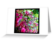 Tropical Suburbia Greeting Card