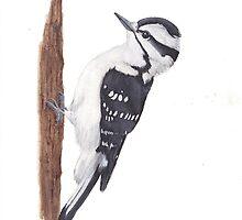 Downy Woodpecker bird by eyesoftheforest