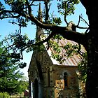 Presbyterian Church - Hill End by Marilyn Harris