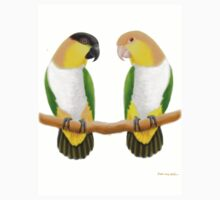 Caique Parrot Love by Carolyn  McFann