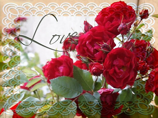 Red Roses, Love and Lace by Sandra Foster