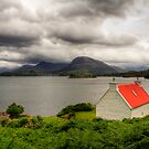The Red Roof by bidkev