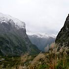Leading to Milford Sound by Magee