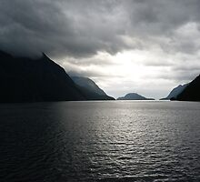 Doubtful Sound by Magee