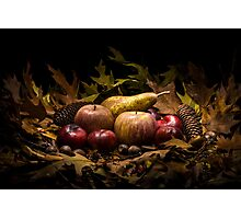Autumnal still life composition with apples, pear and prunes Photographic Print