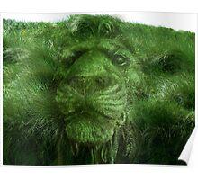 spirit of the grasses Poster
