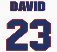 National baseball player David Freese jersey 23 by imsport