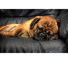 Shhh, Pug Sleeping Photographic Print