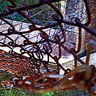 Rusted Chain link by Charlotta