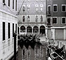 Venice Calm by Venice