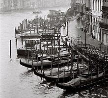 Mornings Mist by Venice