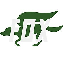 Fox (Star Fox) Logo Photographic Print