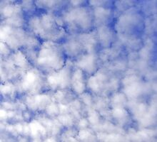 Just Clouds by Trish Meyer