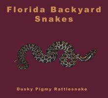 Dusky Pigmy Rattlesnake by Michael L Dye