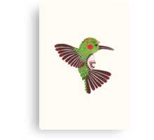 The Green Hummingbird Canvas Print