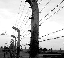 Barbed wire fence ( Birkenau ) by anfa77