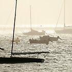 Saint-Pierre Quiberon Harbour by DRWilliams