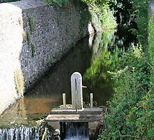 The Stream at St David's Cathedral by DRWilliams