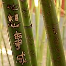 Bamboo Carvings - 1 ©  by © Hany G. Jadaa © Prince John Photography