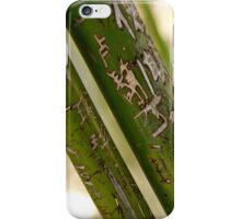 Bamboo Carvings - 2 © iPhone Case/Skin