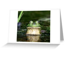 Bullfrog  Greeting Card
