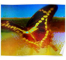 Giant swallowtail flying on waves of light Poster