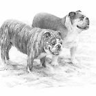 bulldogs on the beach drawing by Mike Theuer