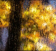 Rainy Day Blues by Mary Ann Reilly