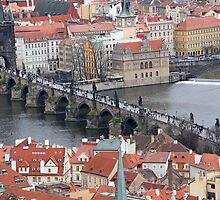 The Charles Bridge by DRWilliams