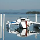 Reflection over Lake Macquarie NSW by Phil Woodman
