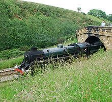 Pickering to Grosmont Steamer by dougie1
