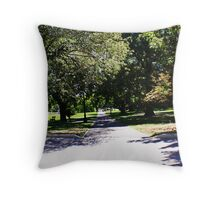 Sunshine and shade Throw Pillow