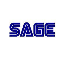 SEGA SAGE by TrueNarnian