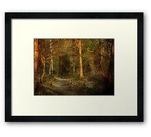 The Path On Grym's Dyke Framed Print