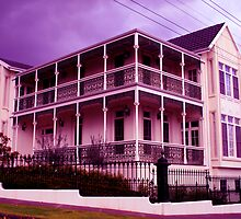 Purple Patch by JohnArnold