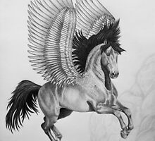 """""""On Wings of Freedom"""" by SD 2010 Photography & Equine Art Creations"""