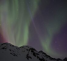 Night Lights #15 by akaurora