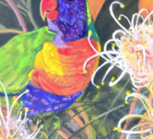 Rainbow Lorikeet Sticker