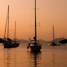 Yachting at sunset by Matt Sillence