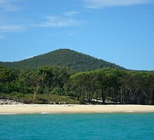 Moreton Island, Queensland, Australia by Samantha  Goode