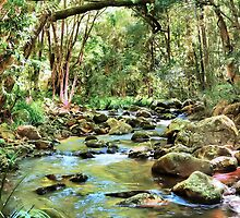 "Coohoo Wahou Creek by Phineous ""Flash""   Cassidy"