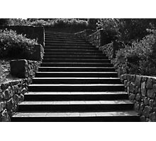 Kings Park Stairs  Photographic Print