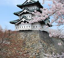 Cherry blossoms at Hirosaki Castle by rushbyfamily