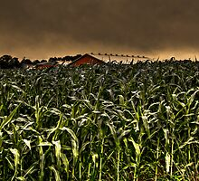 Children Of The Corn by Kevin  Kroeker