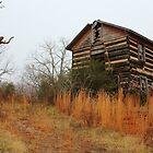 Log Cabin on Swicegood Road by krishoupt