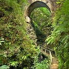 Lydford Gorge Road Bridge by M G  Pettett