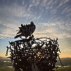 Bird and Nest on Top of Dairy Farmers Hill at the National Arboretum in Canberra/ACT/Australia by Wolf Sverak