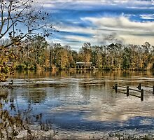 Alabama Flood Waters by Patricia Montgomery
